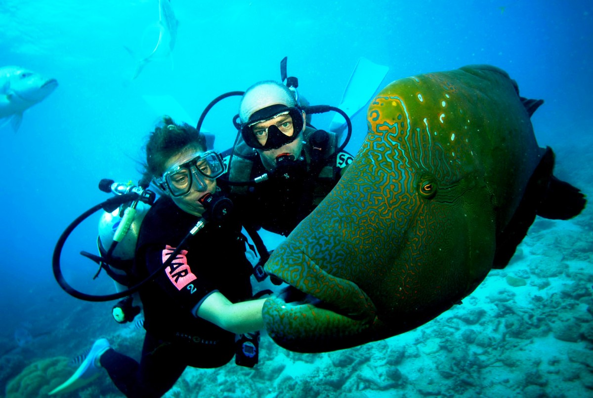 Scuba-diving-turks-and-caicos-barrier-reef